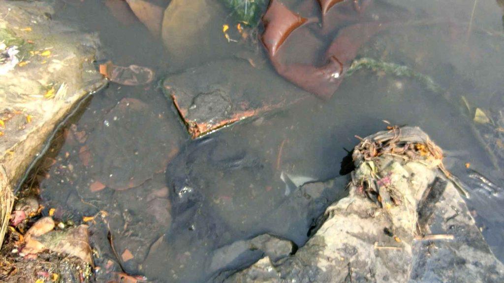 汚いガンジス川の水
