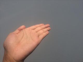 おすすめする左手