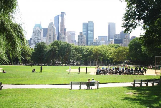 背景ビルのセントラルパーク